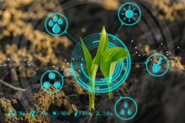 Mobile phones and apps to learn more about soils, crops, and seeds to improve farmers' productivity in Africa.